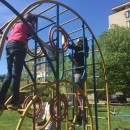 """Young volunteer"" Club  in action: cleaned and painted playgrounds"